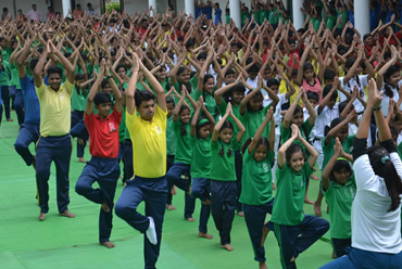 INTERNATIONAL YOGA DAY 2016-17